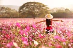 Kosmosu kwiatu pola Fotografia Royalty Free