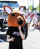 Kostümkänguruh in der Parade Stockbilder