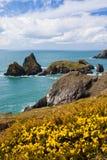 Kosten an der Kynance Bucht Cornwall Lizenzfreie Stockfotografie