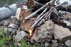Koster del abedul ramifica una pequeña llama Fotografía de archivo