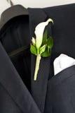 kostiumu ślub Zdjęcia Stock