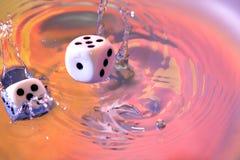 Kostka do gry Gemowi W wodzie Fotografia Royalty Free