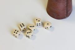 Kostka do gry sztuki Kniffel filiżanki skóry liczby gemowy szczęście Zdjęcia Stock