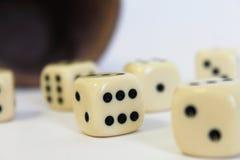 Kostka do gry sztuki Kniffel filiżanki skóry liczby gemowy szczęście Fotografia Stock