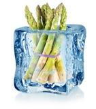 Kostka lodu i asparagus obraz royalty free