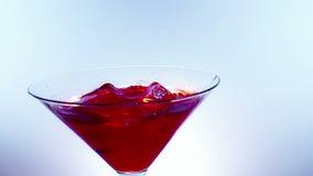 Kostka lodu spada puszek z pluśnięciem w czerwonego świeżego alkoholu koktajlu napój na błękita światła odcienia tle, strzału zwo zdjęcie wideo