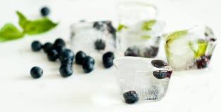Kostka lodu z czarnymi jagodami i mennicą Zdjęcie Royalty Free