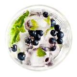 Kostka lodu z czarnymi jagodami i mennicą w szkle Fotografia Royalty Free