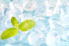 Kostki lodu i świeży nowych liści abstrakta tło Zdjęcie Royalty Free