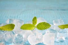 Kostki lodu i świeży nowych liści abstrakta tło Zdjęcie Stock