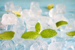 Kostki lodu i świeży nowych liści abstrakta tło Obraz Royalty Free
