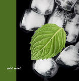 Kostki lodu odizolowywać na czerni Fotografia Stock
