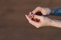 Kostki lodu w ludzkich rękach Fotografia Royalty Free
