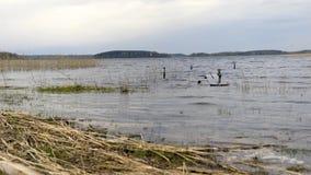 Kostnad av sjön Braslav _ arkivfilmer