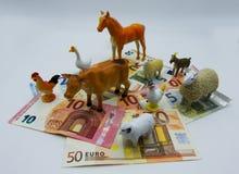 Kostnader för boskapavel, begrepp royaltyfri bild