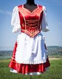 kostymerar folk hungary kvinnor Arkivfoton