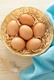 Kosz Brown jajka zdjęcie royalty free