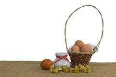 Kosz jajka Obrazy Royalty Free
