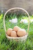 Kosz jajka na trawie Obraz Royalty Free