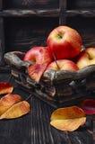 Kosz jesieni jabłka Obrazy Royalty Free