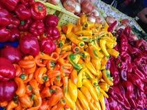 Kosz kolorowi pieprze fotografia stock