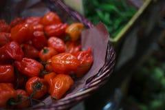 Kosz Organicznie pieprze przy rolnika rynkiem Obrazy Stock