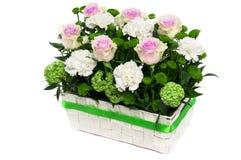 Kosz piękni kwiaty odizolowywający Obrazy Stock
