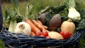 Kosz warzywa zdjęcie wideo