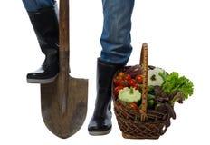 Kosz warzywa stoi blisko farmer& x27; s cieki fotografia stock