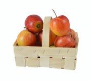 Kosz z jabłkami Obraz Stock
