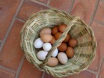 Kosz z jajkami Fotografia Royalty Free