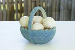 Kosz z jajkami Obraz Stock