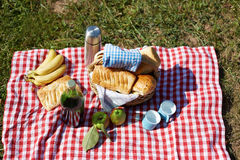 Kosz z jedzeniem, chlebem i winem na pinkinie, Obraz Stock