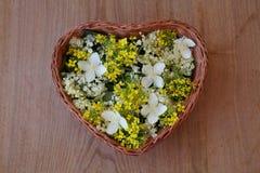 Kosz z kwiatami Zdjęcie Royalty Free