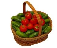 Kosz z ogórkami i pomidorami Fotografia Stock