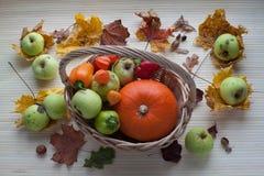 Kosz z owoc i warzywo Obrazy Royalty Free