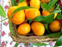 Kosz z tangerines Zdjęcie Royalty Free