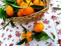 Kosz z tangerines Zdjęcia Royalty Free