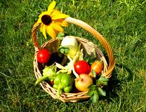 Kosz z warzywami Obraz Stock