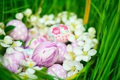 Kosz z Wielkanocnymi jajkami i wiosną kwitnie wokoło Obraz Royalty Free