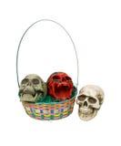 kosza barwione Easter czaszki Fotografia Stock