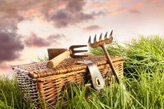 kosza ogródu trawa wytłaczać wzory wicker fotografia royalty free