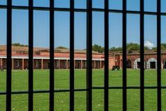 Koszaruje przy fortem Pulaski Fotografia Royalty Free