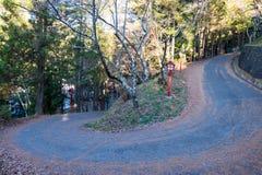 Koszowa droga góra Chureito świątynia Zdjęcia Stock