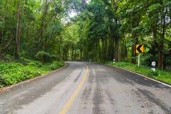 Koszowa droga w górę wzgórza w lesie tropikalnym Zdjęcie Stock