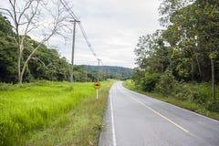 Koszowa droga z camber drogowym znakiem Obraz Royalty Free