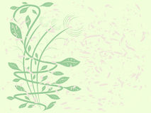 koszowa roślinnych Zdjęcia Stock