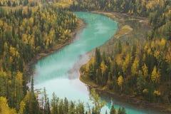 koszowy riverway Zdjęcie Royalty Free