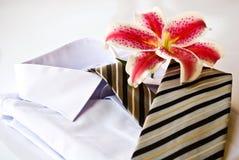 koszulowy krawat Obraz Royalty Free