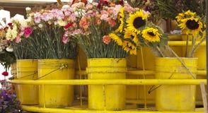 koszy kwiaty Zdjęcia Stock